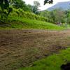 Pamali Festival 2010 - Work In Progress - 52