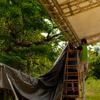 Pamali Festival 2010 - Work In Progress - 03